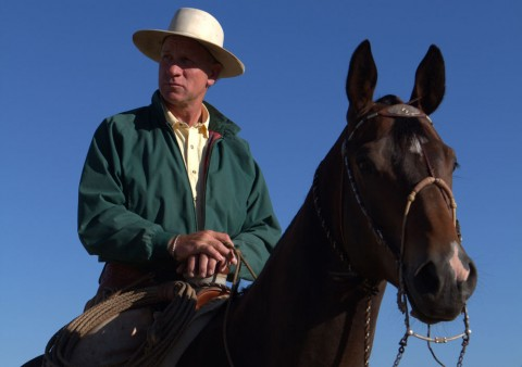 "Brannaman on horseback, as seen in ""Buck,"" directed by Cindy Meehl. Photo by Ezra D. Olsen. A Sundance Selects Release."