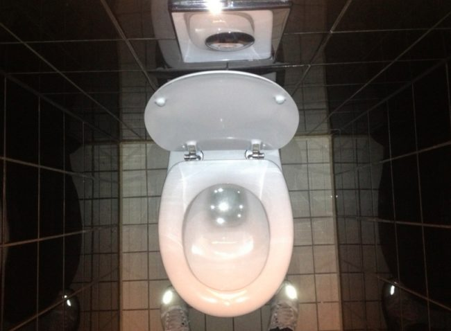 Alfred Hitchcock's <em>Psycho</em> was the first film ever to show a toilet flushing.
