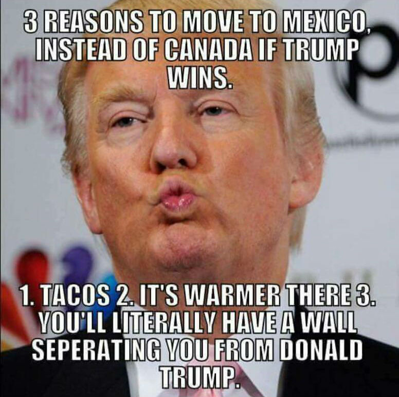 Image result for trump memes