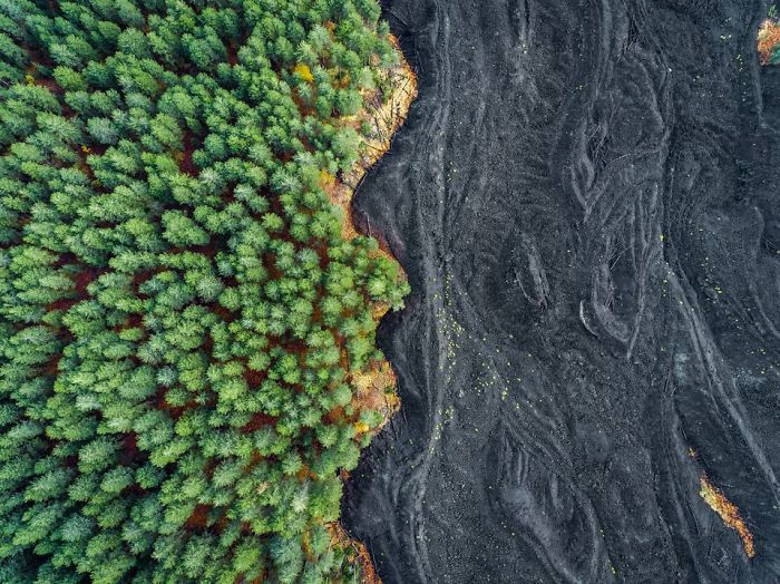 Solidified Lava Vs Forest