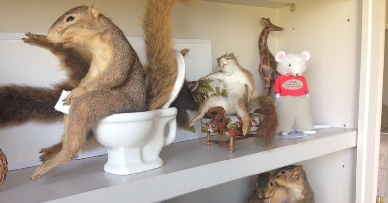 20 weird things people found lurking inside the walls of - Things you find on walls ...