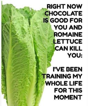 romaine-lettuce-can-kill-you-1542822587082-1542822589817.PNG