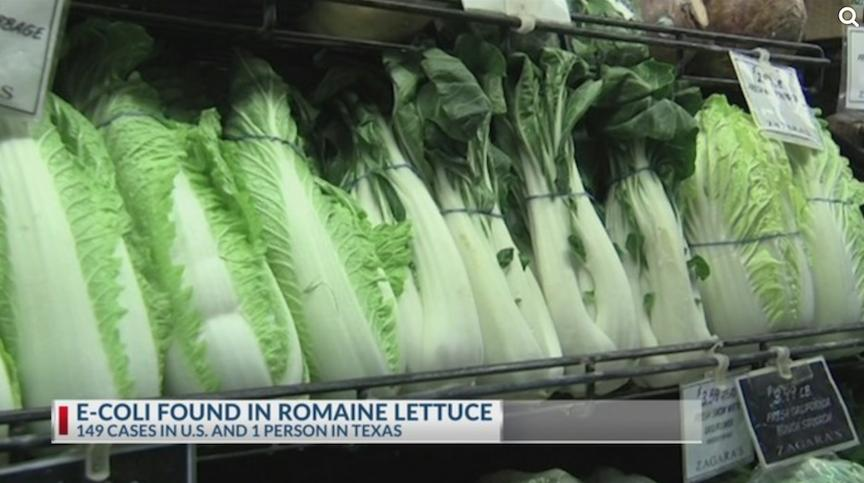 not-romaine-lettuce-1542821533979-1542821537757.png