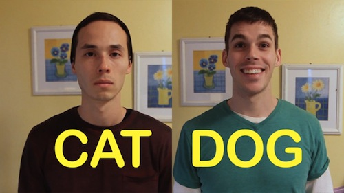 What if humans acted like cats and dogs?